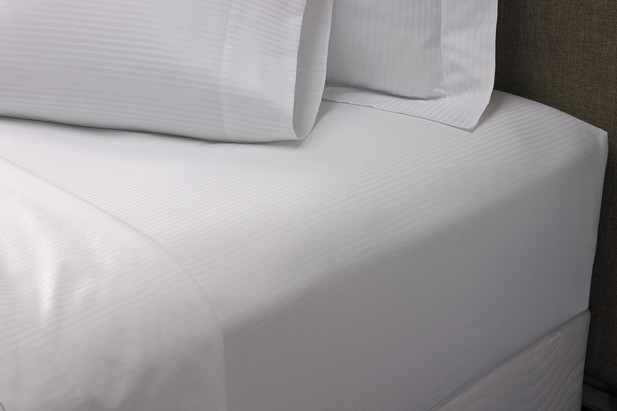 Soft Down Feather Pillows